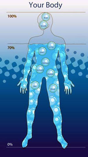 acqua nel corpo umano